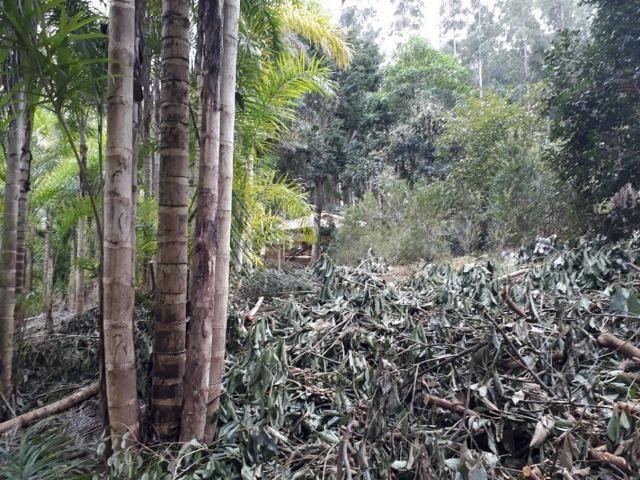 Linda chácara 3.000² a 7 km do trevo de Fazenda do Estado e 15km de Pedra Azul D.M.!! - Foto 3