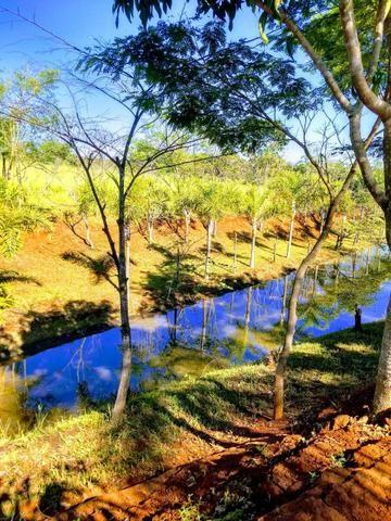Chácara com lagos e pomar - Foto 8