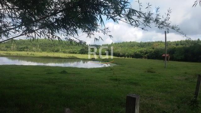 Sítio à venda com 3 dormitórios em Olaria, Triunfo cod:MF22250 - Foto 7