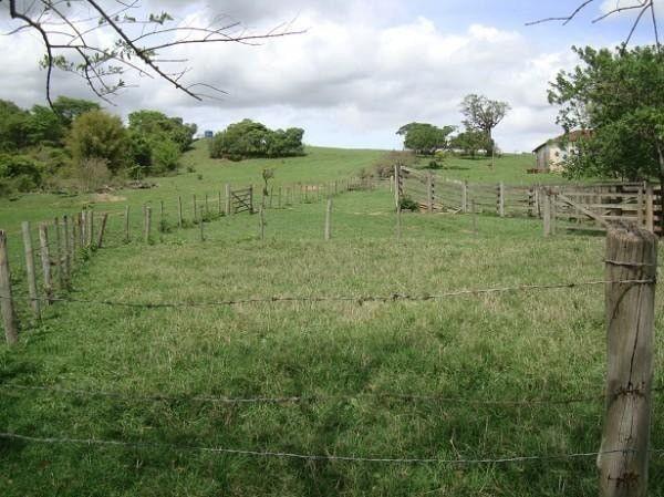 Realize seu sonho e adquira já sua propriedade rural ou urbana - Foto 5