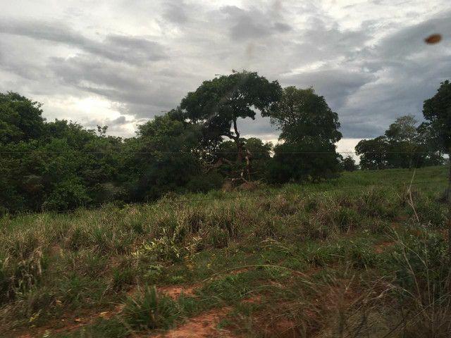 Fazenda 95 Alqueires | 130 km Rio Verde | oport. Única  - Foto 2