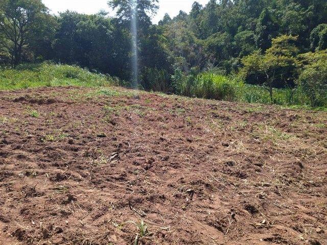 Fazenda/Sítio/Chácara para venda com 1000 metros quadrados com 2 quartos - Foto 3