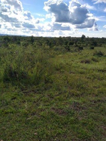Vendo uma linda fazenda no município de conceição do Tocantins 15 milhões   - Foto 4