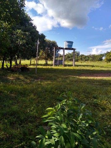 Vendo uma linda fazenda no município de conceição do Tocantins 15 milhões   - Foto 14