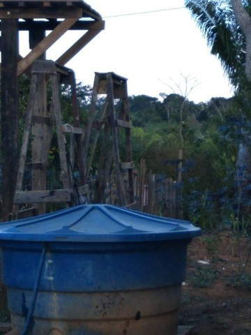 vende uma chácara de 2 hectares em Rio Branco-AC - Foto 6