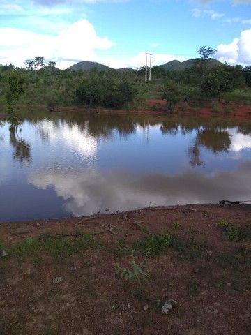 Vendo uma linda fazenda no município de conceição do Tocantins 15 milhões   - Foto 5