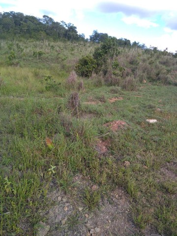 Vendo uma linda fazenda no município de conceição do Tocantins 15 milhões   - Foto 2