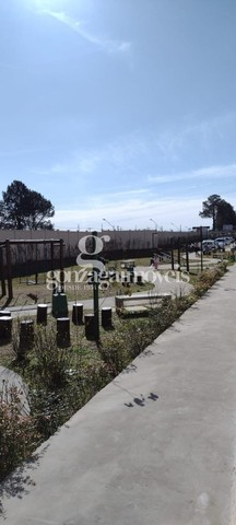 Apartamento para alugar com 2 dormitórios em Santa cândida, Curitiba cod:64691001 - Foto 7