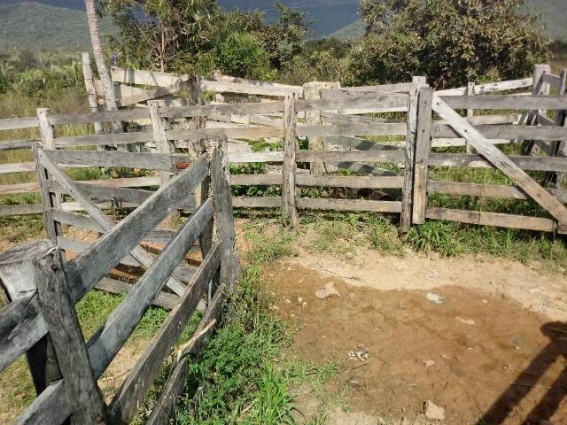Fazenda em Rosário Oeste ha 140 km de Cuiabá - Foto 8