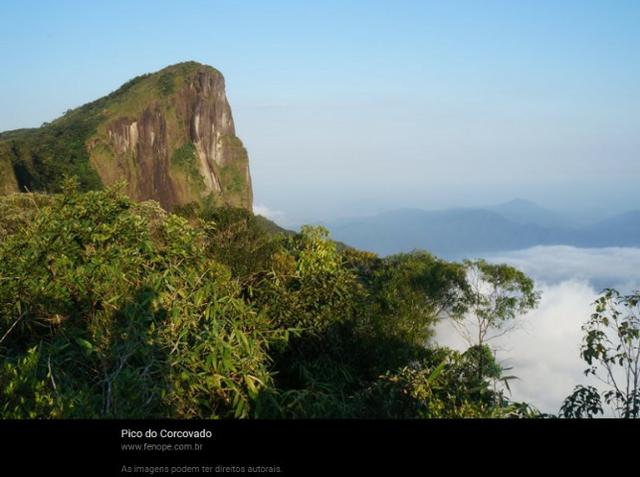 Ubatuba SP - Mata Atlântica   Área Comp. Ambiental, Parque, APP, Santuário, 715 alqueires - Foto 5