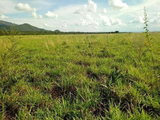 Fazenda em Rosário Oeste ha 140 km de Cuiabá