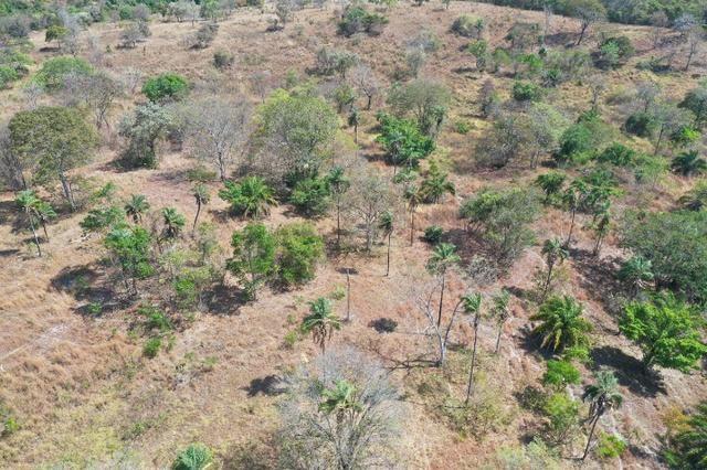 Fazenda no município de faina-GO! 24 Alqueires! - Foto 10