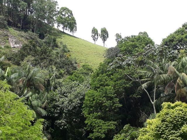 Linda chácara 3.000² a 7 km do trevo de Fazenda do Estado e 15km de Pedra Azul D.M.!! - Foto 17