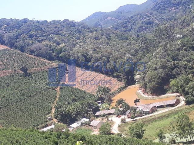 JG. Sítio de 234 mil m² com casa de 3 quartos com suíte em Marechal Floriano! - Foto 14