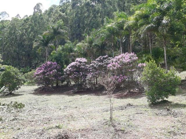 Linda chácara 3.000² a 7 km do trevo de Fazenda do Estado e 15km de Pedra Azul D.M.!! - Foto 11