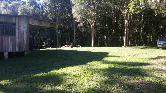 Vende se Chácara (16km do Centro de Contenda) - Foto 6