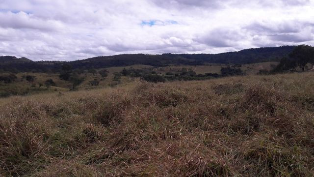 Fazenda 180 Há em São José da Varginha - Foto 14