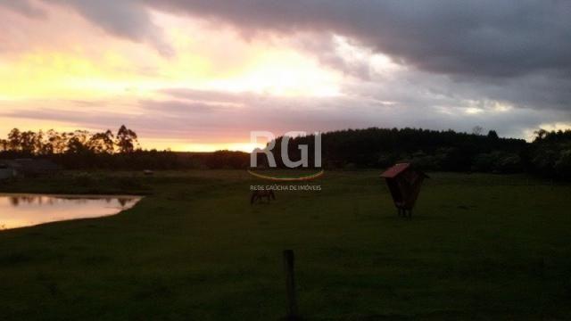 Sítio à venda com 3 dormitórios em Olaria, Triunfo cod:MF22250