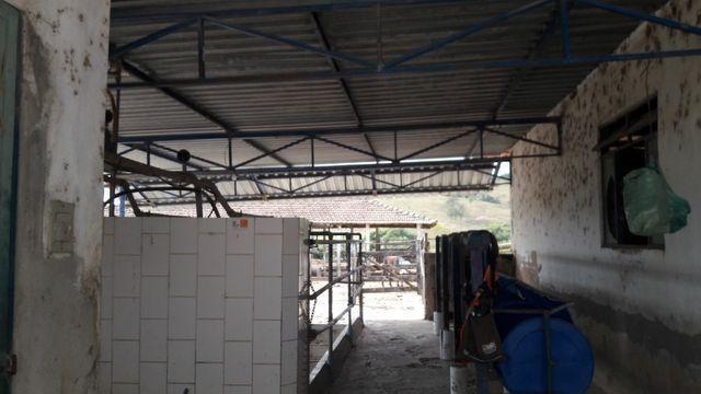 Fazenda 180 Há em São José da Varginha - Foto 16