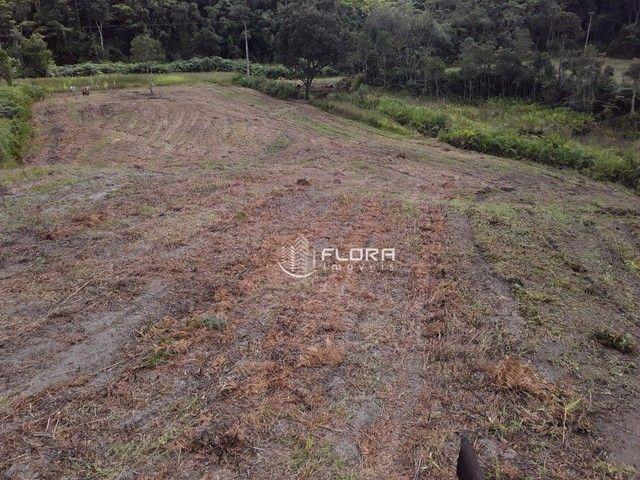 Terreno à venda, 32240 m² por R$ 778.000 - Posse - Petrópolis/RJ - Foto 10
