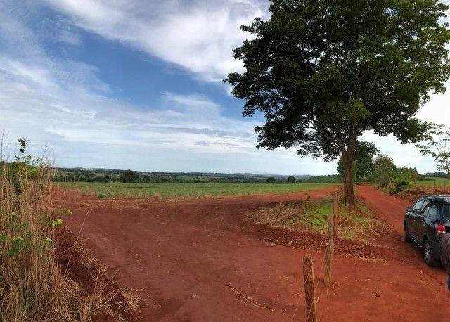 Fazenda Brazabrantes 12 alq. Planos ! - Foto 3