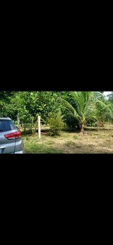 Terreno km 10 Estrada Novo Airão  - Foto 7
