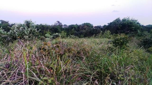 Lote de Terreno no Village Jacumã - Foto 8