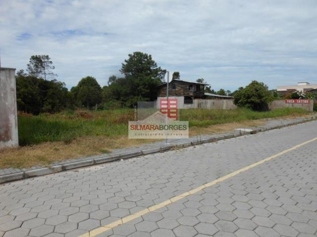 2 terrenos juntos no bairro Meia Praia. - Foto 3