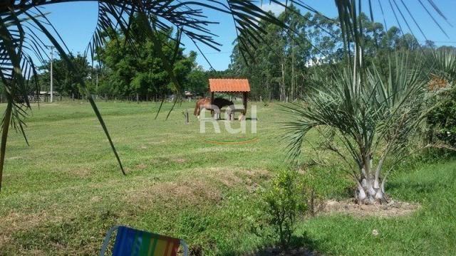Sítio à venda com 3 dormitórios em Olaria, Triunfo cod:MF22250 - Foto 16