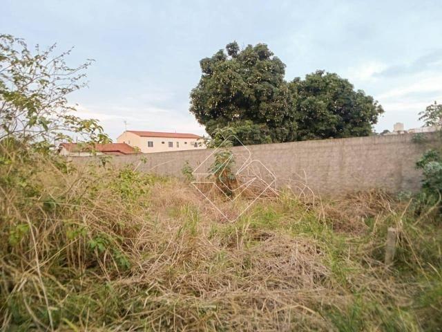 Terreno à venda, 300 m² por R$ 250.000,00 - Odília - Rio Verde/GO - Foto 3