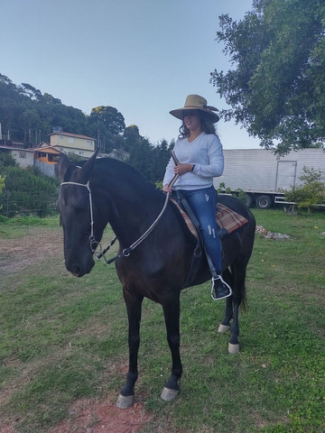 Égua mm sem registro égua pra cavalgada  - Foto 3