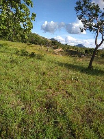 Vendo uma linda fazenda no município de conceição do Tocantins 15 milhões   - Foto 11