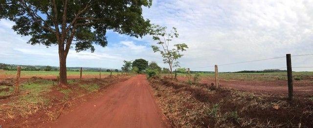 Fazenda Brazabrantes 12 alq. Planos ! - Foto 2