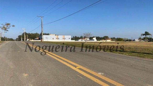 Terreno com 450 m² no asfalto, Ninho Verde 1 (Nogueira Imóveis) - Foto 9