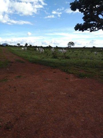 Vendo uma linda fazenda no município de conceição do Tocantins 15 milhões   - Foto 10