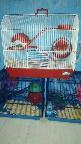 gaiola hamster grande - Foto 2