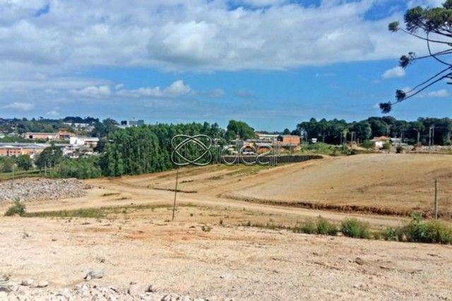 Terreno à venda em Ana rech, Caxias do sul cod:17208 - Foto 18