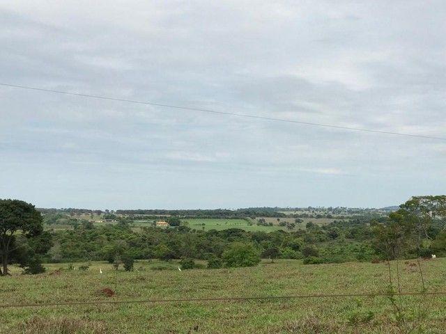 Fazenda Brazabrantes 12 alq. Planos ! - Foto 6