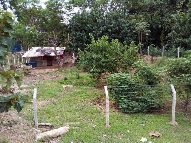 Vendo  chácara no bairro três barras  - Foto 2