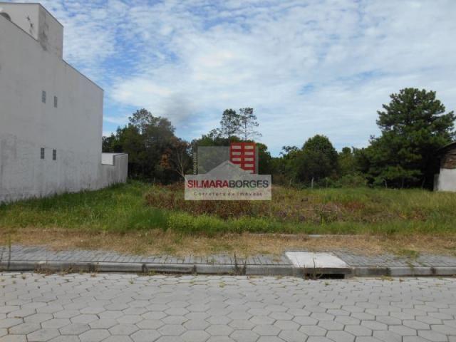 2 terrenos juntos no bairro Meia Praia.