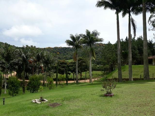 Linda chácara 3.000² a 7 km do trevo de Fazenda do Estado e 15km de Pedra Azul D.M.!! - Foto 13
