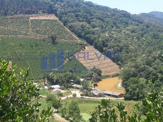 JG. Sítio de 234 mil m² com casa de 3 quartos com suíte em Marechal Floriano! - Foto 17