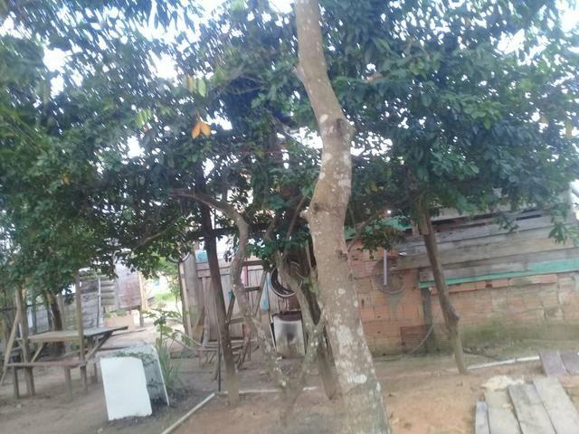 Vendo casa no município de autazes - Foto 4