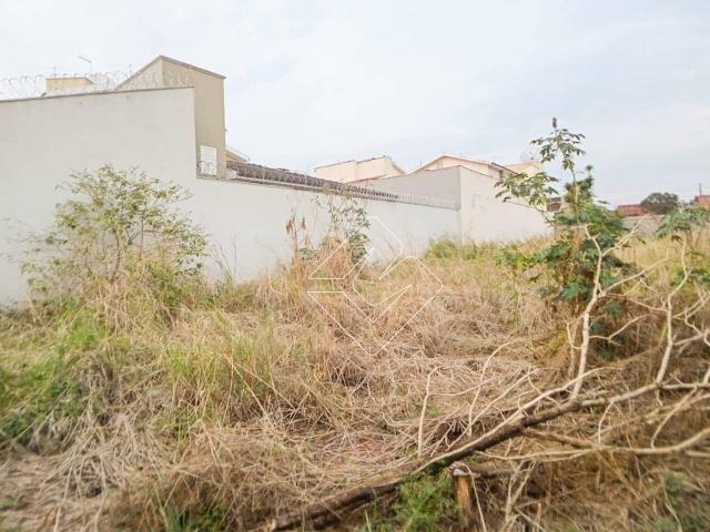 Terreno à venda, 300 m² por R$ 250.000,00 - Odília - Rio Verde/GO - Foto 2