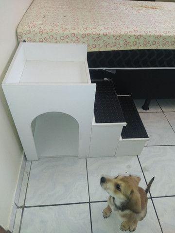 Escada para cães - Foto 2