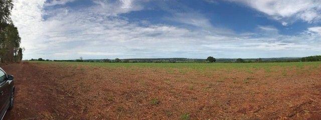 Fazenda Brazabrantes 12 alq. Planos ! - Foto 13