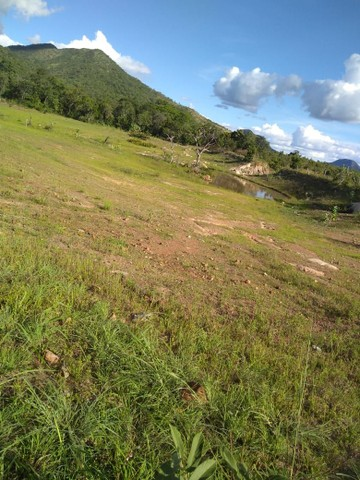 Vendo uma linda fazenda no município de conceição do Tocantins 15 milhões   - Foto 12