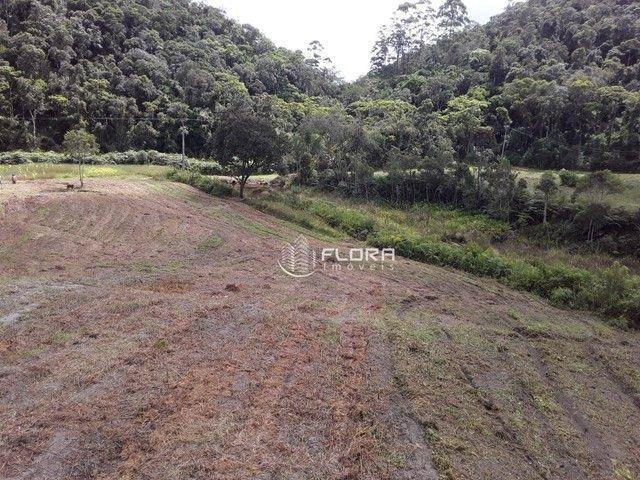 Terreno à venda, 40766 m² por R$ 978.000 - Posse - Petrópolis/RJ - Foto 10