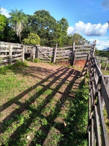 Vendo uma linda fazenda no município de conceição do Tocantins 15 milhões   - Foto 9