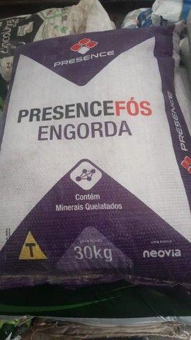 Sal mineral  e sal proteinado